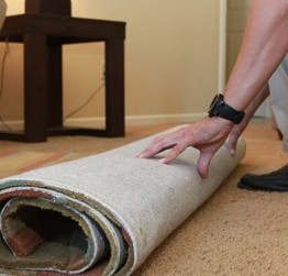 oriental rug cleaning/ free pick up and drop off service/ RI